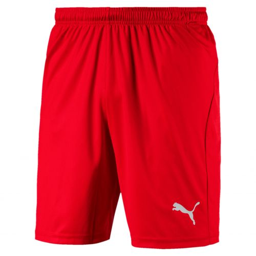 Puma teamLIGA Short Core - Rouge