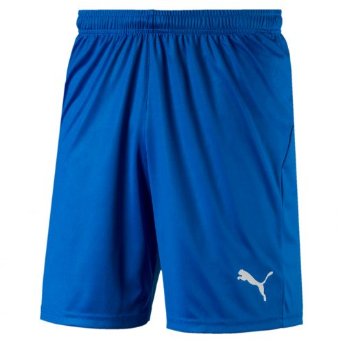 Puma teamLIGA Short Core - Bleu Royal