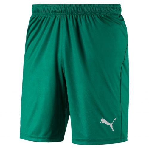Puma teamLIGA Short Core - Vert