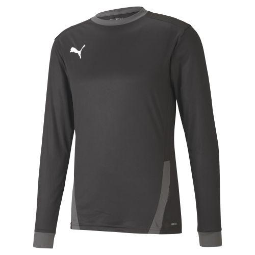 Puma teamGOAL  Jersey LS - Noir