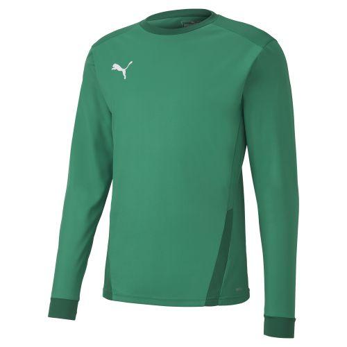 Puma teamGOAL  Jersey LS - Vert
