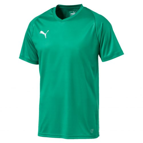 Puma teamLiga Core Jersey - Blanc