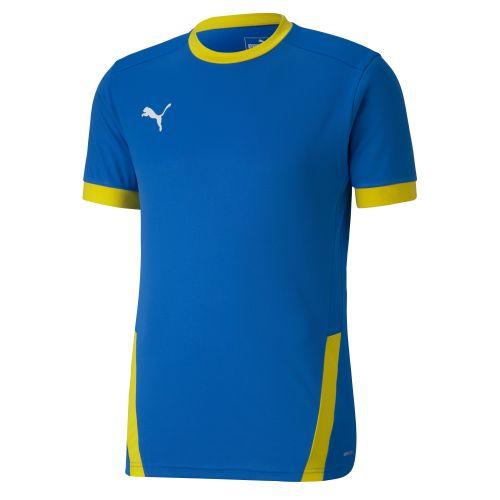 Puma teamGOAL Jersey - Blanc & Bleu