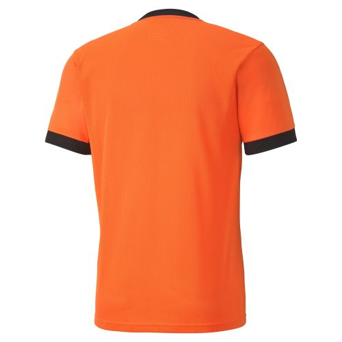 Puma teamGOAL Jersey - Orange & Noir