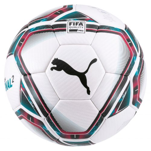 Puma teamFINAL 21.2 FIFA Quality Pro Ball T.5